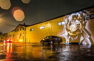 Julien Nonnon – Street mapping à Evry